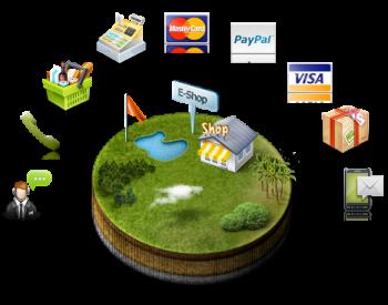 Votre e-shop plus seul sur internet grâce aux conseils de nos consultants ecommerce